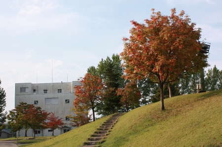 Aki2008_2